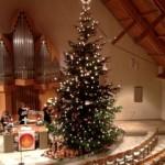 Weihnachtsbaum_2013